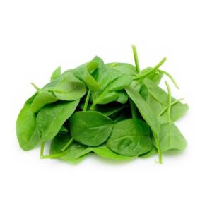Thinking Of: Can Horsefield Tortoises Eat Baby Spinach? Well, Find Out Here